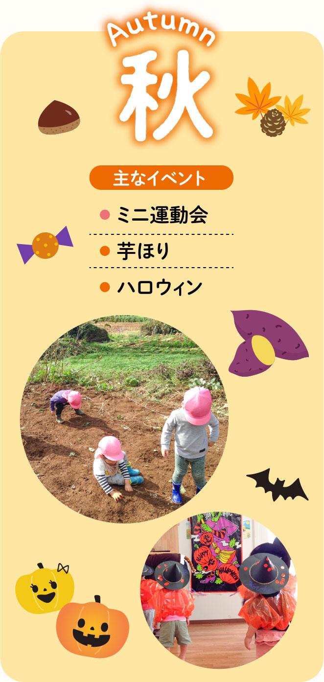 秋 主なイベント ミニ運動会 芋ほり ハロウィン